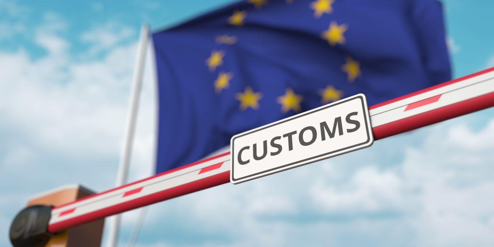 Government grant for customs training funding